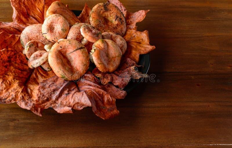Delicious autumn mushrooms on a wooden table. Delicious mushrooms on a wooden table with tree leaves stock photos