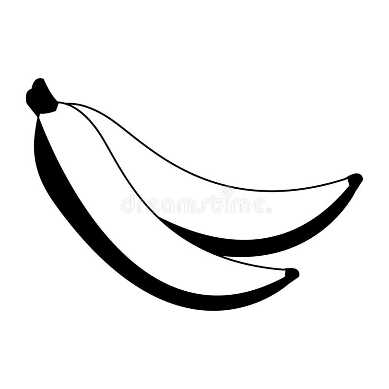 Delicious bananas fruits in black and white vector illustration