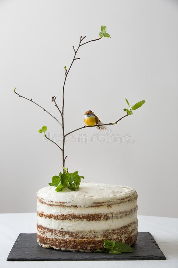 Delicious birthday cake with branch of a tree, birds. Beautiful white carrot cake on the black board for the second birthday party stock photo