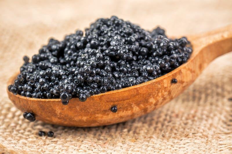 Delicious black caviar royalty free stock photography