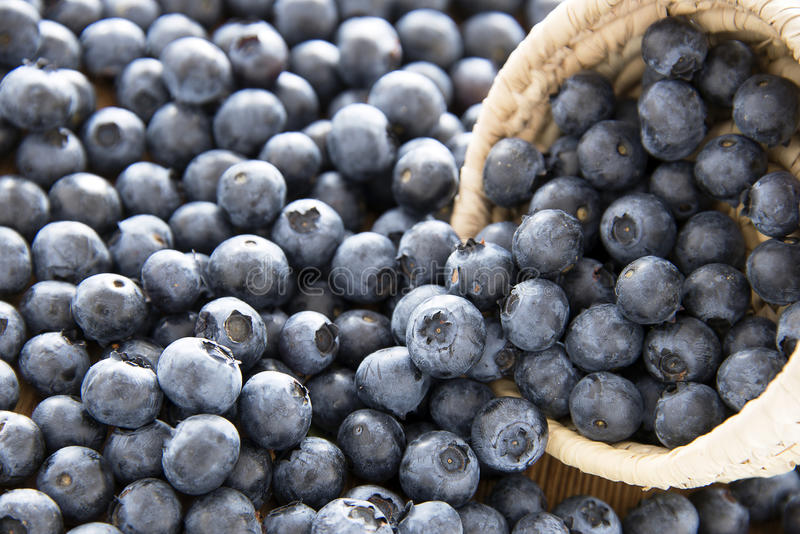 Delicious blueberries royalty free stock photos