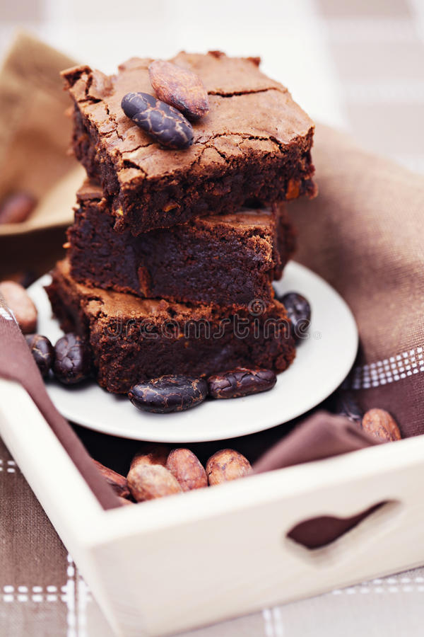 Download Delicious brownie stock image. Image of food, dessert - 22311739