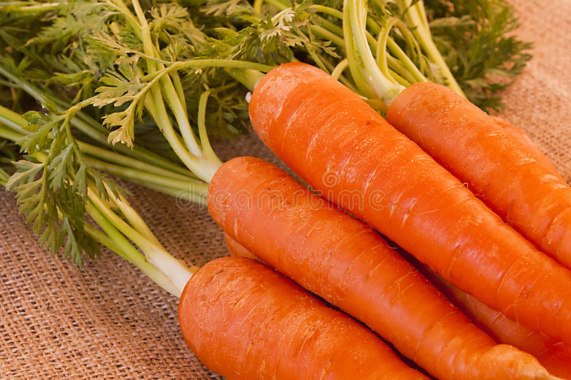 Delicious bunch of fresh carrots