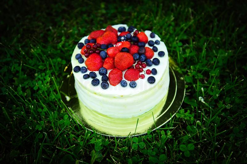 Delicious cake with cream and fresh berries on background of greenery, homemade cakes made from natural farm ingredients. Cake stock image