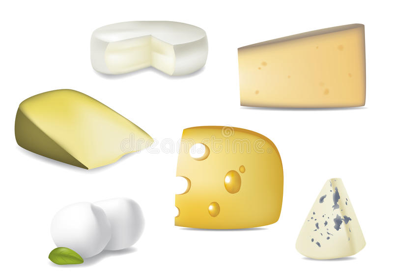 Download Delicious Cheese Selection stock vector. Image of holes - 25777258
