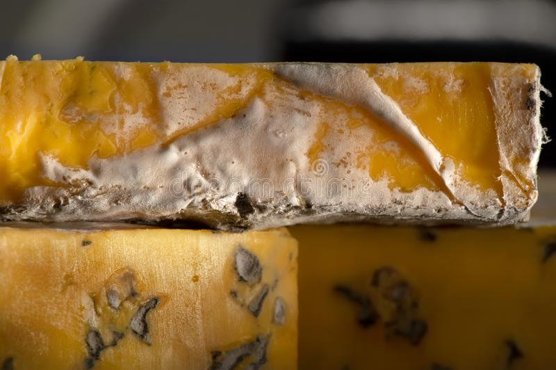 Delicious cheeses with blue cheese Close-up detailed shot.  royalty free stock photo
