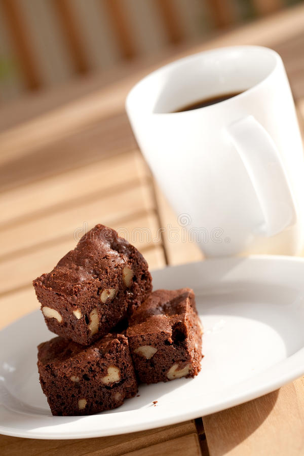 Delicious chocolate brownie with pecan and walnut. royalty free stock photos