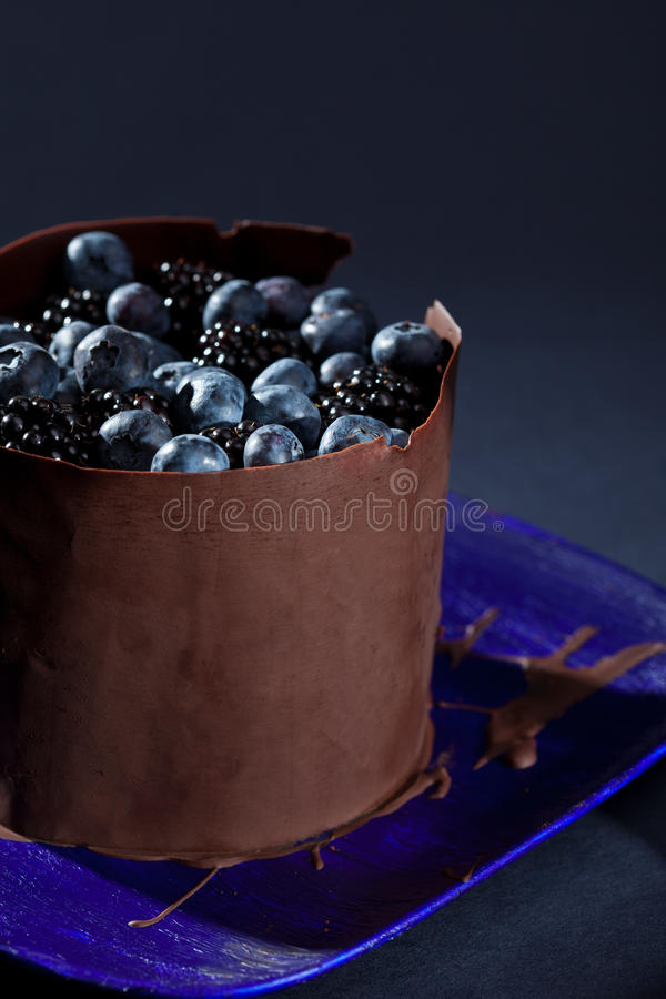 Download Delicious chocolate cake stock photo. Image of cake, berries - 21768934