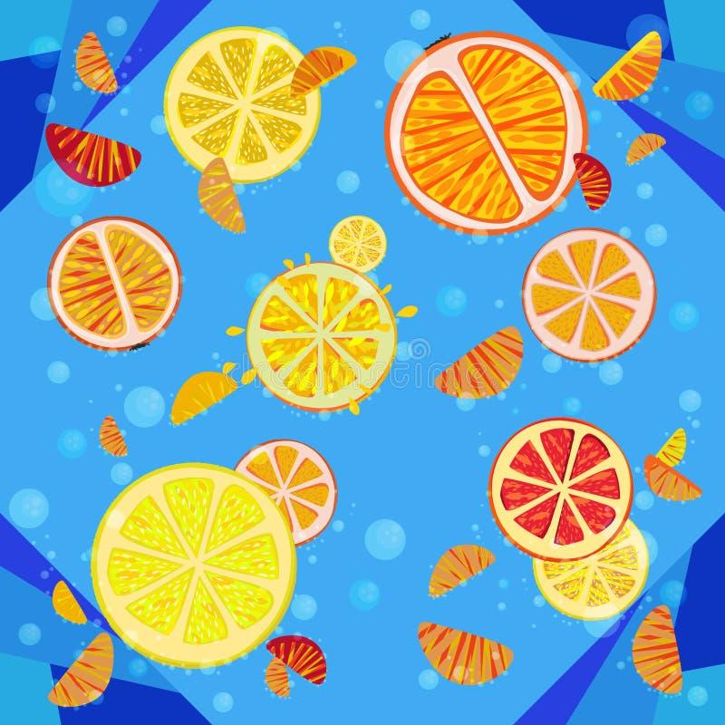 Delicious citrus fruit stock illustration