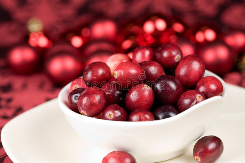 Delicious cranberries stock photography