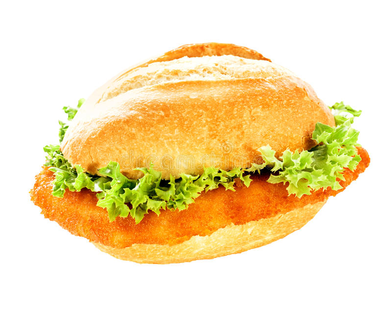Delicious fish burger on a crusty bun. Delicious fish burger with fresh frilly lettuce and a crumbed fish fillet on a crusty bun isolated on white stock photos