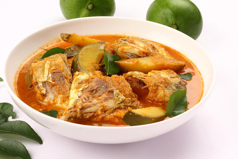 Delicious Fish curry with coconut and mango royalty free stock images