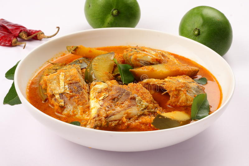 Delicious Fish curry with coconut and mango. Indian cuisine-Delicious Fish curry with coconut and mango royalty free stock images