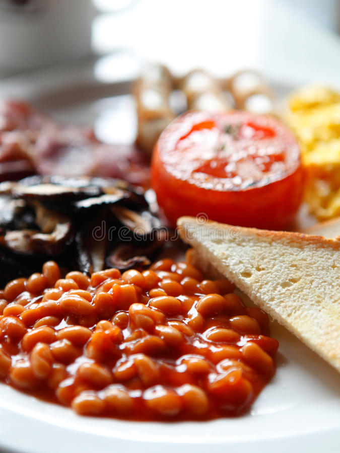 Download Delicious food stock photo. Image of cooking, bean, cooked - 23639900