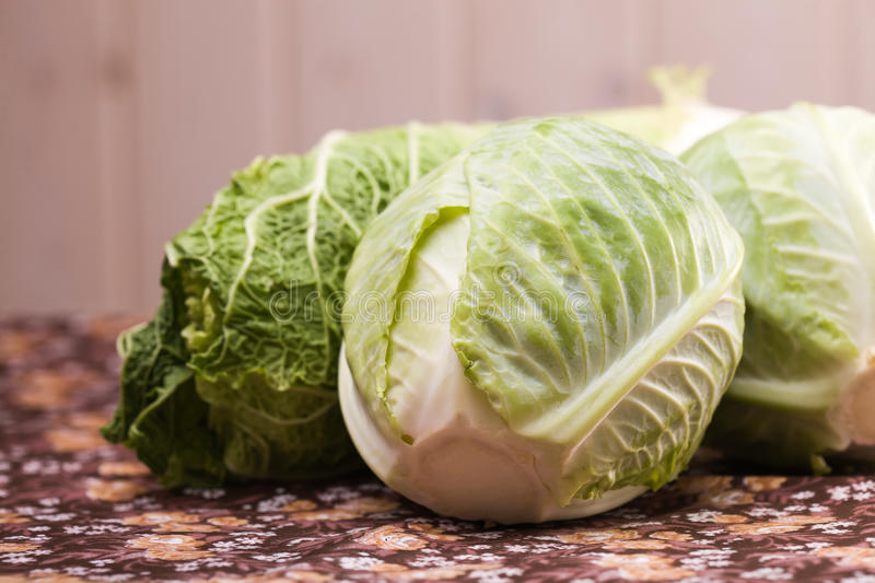 Delicious fresh cabbage royalty free stock photos