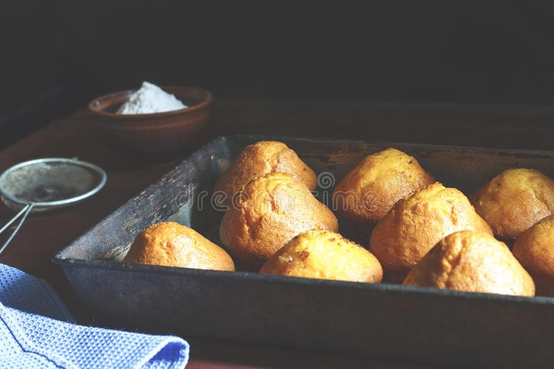 Fresh pastries in a baking tray. Delicious fresh homemade banana muffins in a baking tray royalty free stock photos