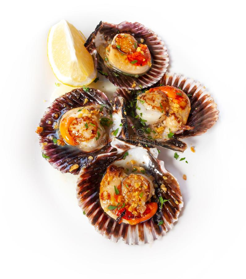 Delicious fresh scallops, cooked with chopped garlic, parsley and lemon on a white plate zamburiñas royalty free stock photos