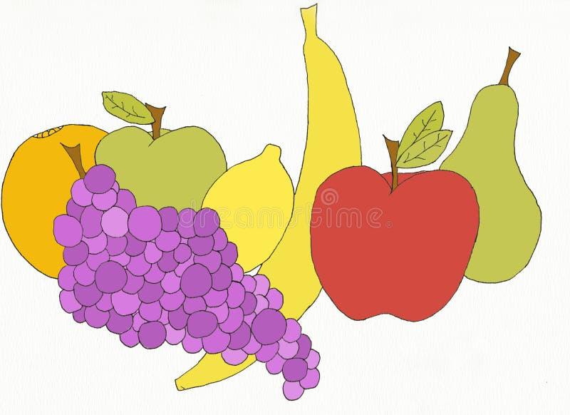 Delicious fruit stock illustration