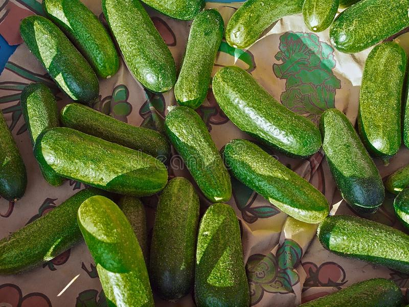 Delicious gherkins at a food market royalty free stock photo