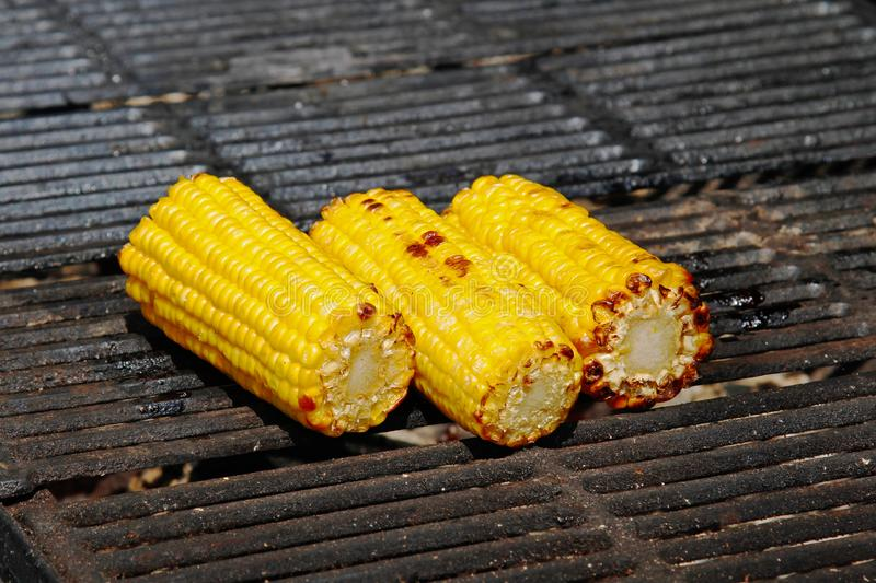 Delicious golden grilled corns stock photography