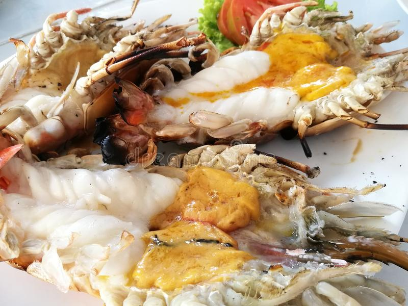 Delicious grilled jumbo giant freshwater river prawns with melted orange head oil, at seafood restaurant in Thailand, royalty free stock images