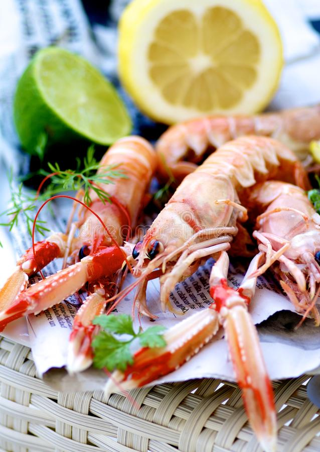 Delicious Grilled Langoustines royalty free stock photography