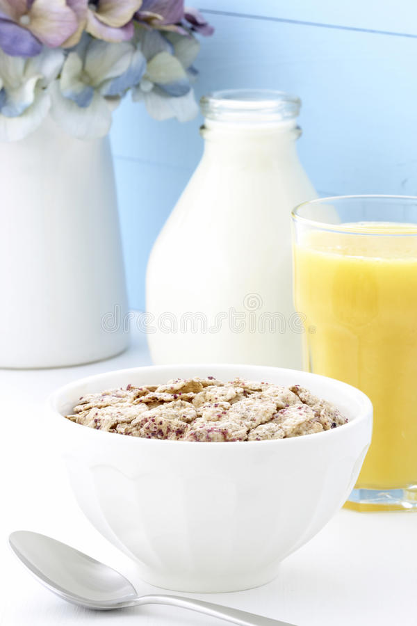 Delicious and healthy berries cereal stock images