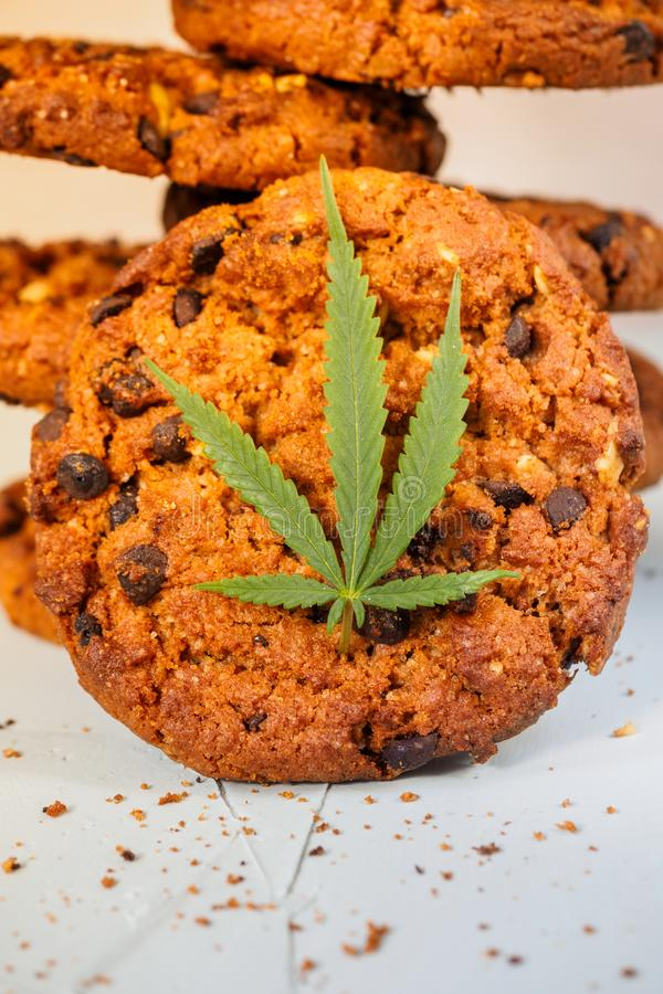 Delicious homemade Chocolate chip Cookies with CBD cannabis and. Leaf garnish and buds. Medicinal Edibles. Treatment of medical marijuana for use in food royalty free stock photography