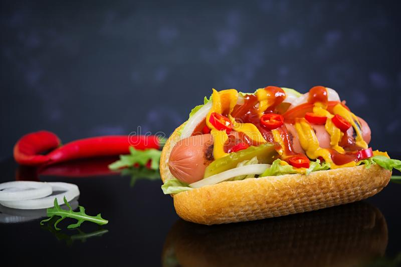 Delicious homemade hot dog on dark background.  stock images