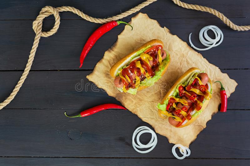 Delicious homemade hot dog on dark background.  stock image