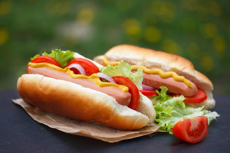 Delicious homemade hot dogs on picnic stock photos