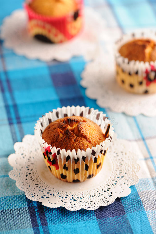 Download Delicious homemade muffins stock image. Image of muffin - 24734997