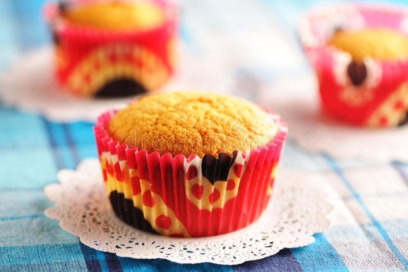 Download Delicious homemade muffins stock image. Image of food - 24755321