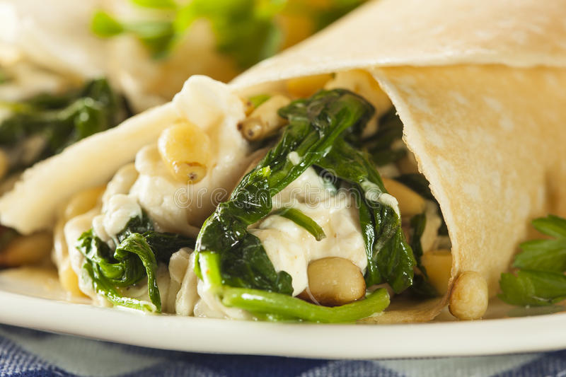 Delicious Homemade Spinach and Feta Savory French Crepes. Delicious Homemade Savory French Crepes with Spinach and Feta royalty free stock image