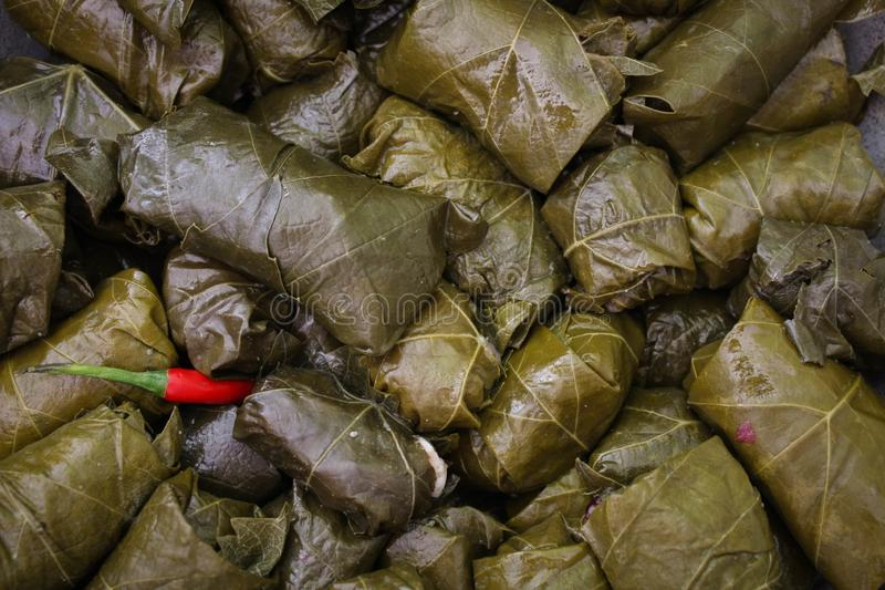 Delicious homemade stuffed grape leaves, the traditional dolma of the mediterranean cuisine in a cooking pot. stock photos