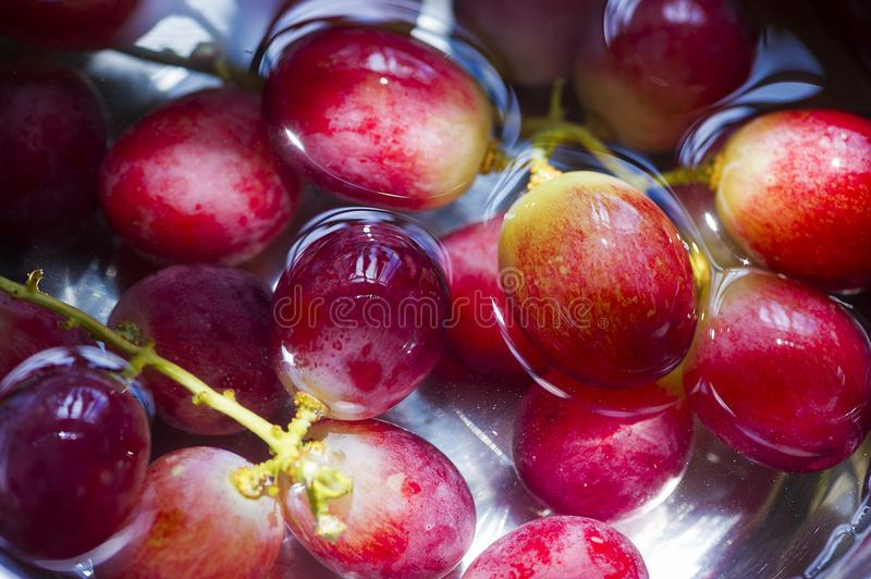 Delicious Juicy Grapes in water royalty free stock photo