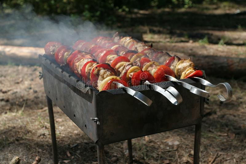 Delicious kebab on BBQ stock photo