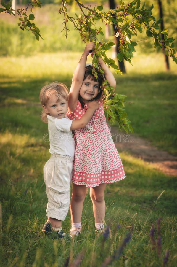 Delicious mulberry tree. Little girl and boy in the forest about mulberry tree royalty free stock photo