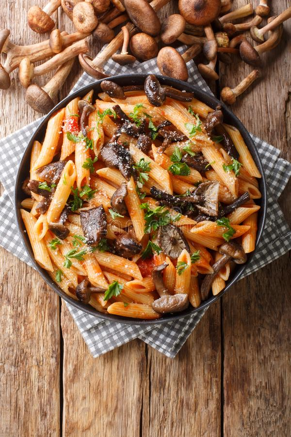 Delicious penne pasta with autumn honey fungus and tomato sauce close-up in a plate. Vertical top view. Delicious penne pasta with autumn honey fungus and tomato royalty free stock photography