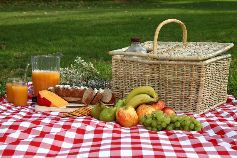 Download Delicious Picnic Spread stock image. Image of full, glasses - 23653589