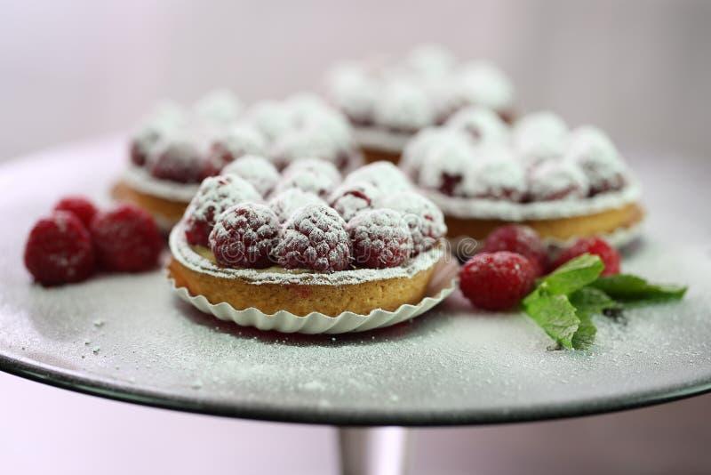 Amazing Raspberry Tart royalty free stock photography