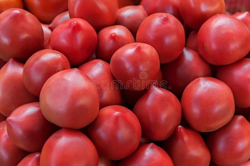 Delicious red tomatoes. A pile of tomatoes. Summer tray market agriculture farm full of organic tomatoes. Fresh tomatoes stock photos