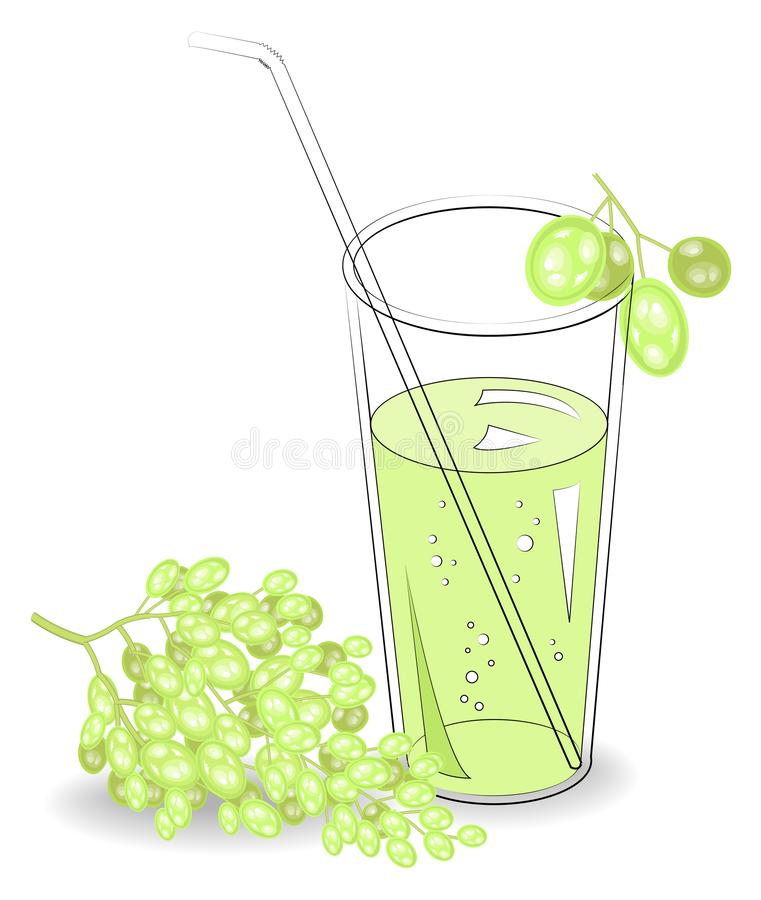 Delicious refreshing drink. In a glass of natural fruit juice, berries of white grapes. Vector illustration.  royalty free illustration