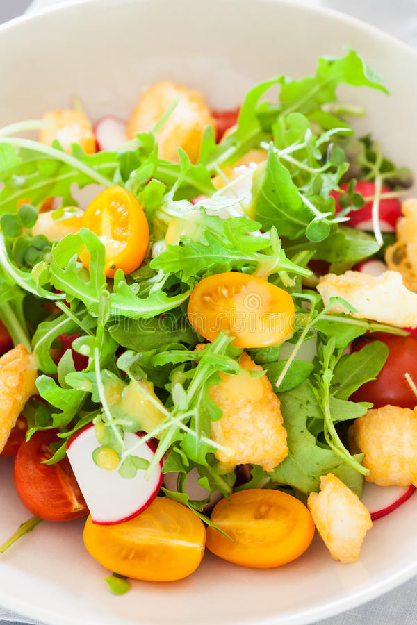 Download Delicious Salad Stock Image - Image: 25518551