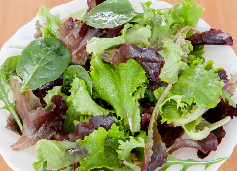 Delicious Salad Different Types Lettuce Leaves Stock Photos
