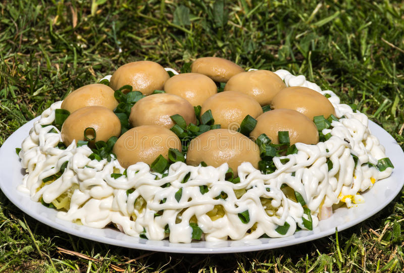 Delicious salad Mushroom glade (salad with champignon and green onion).  stock photos