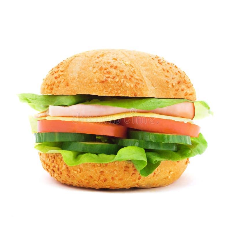 Delicious sandwich stock images