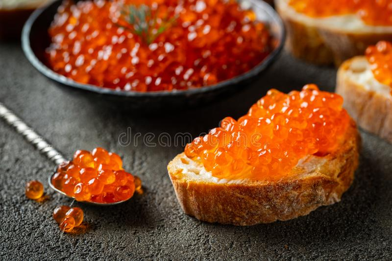 Delicious Sandwiches with red caviar on a dark concrete background.  royalty free stock image
