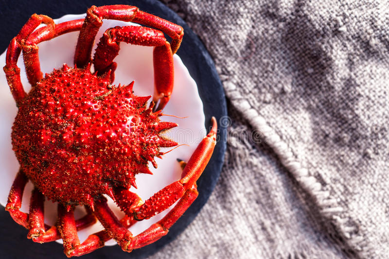 Delicious seafood - Red crab on white plate and rustic sack clot royalty free stock photos