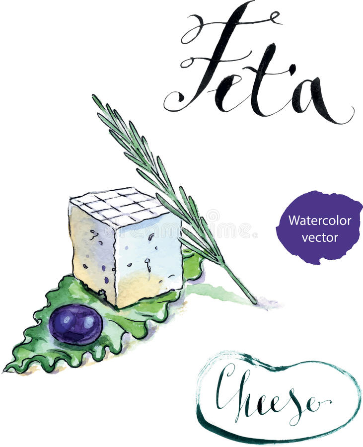Delicious sliced Greek feta cheese with olive, rosemary and salad royalty free illustration